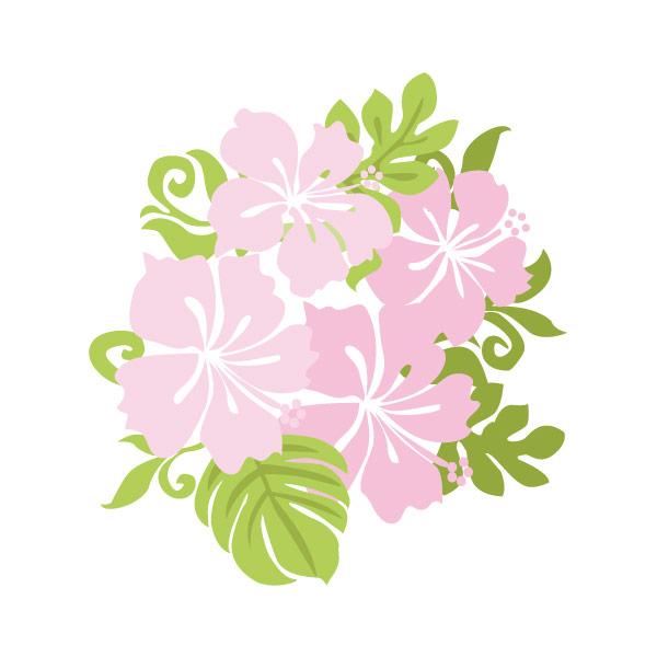 【pnf-001】花(ハイビスカス)